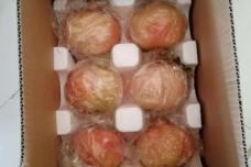 临潼石榴纸箱+泡沫包装 12只装